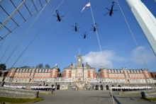 Farewell to the Sea King 'Junglies'